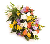 21 freesias