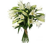 7 white lilies: Lilies