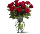 11 thoughts of love: Red roses