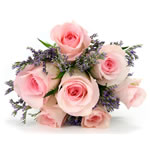 7 pink rosses