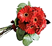 15 red gerberas: Thank you