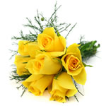 7 yellow roses: Thank you